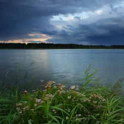 Pojezierze Łęczyńsko-Włodawskie, Polesie Zachodnie