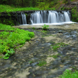 Waterfall on a Jelen Stream, Landscape Park of the Solska Primeval Forest, Central Roztocze