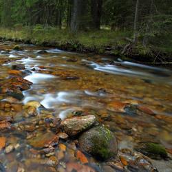Koscieliski Stream, Tatra National Park, Western Tatras