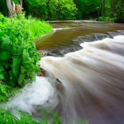Tanew River Nature Reserve, Landscape Park of the Solska Primeval Forest, Central Roztocze
