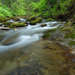 Olczyski Potok, Tatrzański Park Narodowy, Tatry Zachodnie