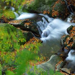 Wodospad na potoku Hylaty, Park Krajobrazowy Doliny Sanu, Bieszczady Zachodnie