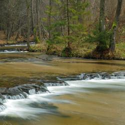 Rzeka Tanew, rezerwat przyrody Nad Tanwią, Park Krajobrazowy Puszczy Solskiej, Roztocze Środkowe