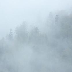 Park Krajobrazowy Doliny Sanu, Bieszczady Zachodnie